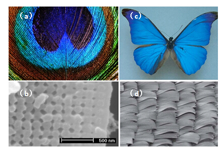 实芯光子晶体光纤的结构